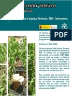 Conceptos Seguridad Alimentaria y Nutricional
