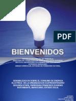 Cultural II. Consumo de Energia Electrica