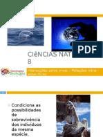 Powerpoint nr. 3 - Interacções seres vivos -Factores do Ambiente - relações intra-específicas