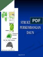 Struktur Dan Perkembangan Daun Itb