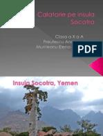 Calatorie Pe Insula Socotra
