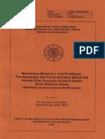 amin.pdf