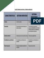 Diferencias Del Sistema Nervioso y Sistema Endocrino