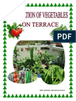 Cultivation of Vegetables on Terrace1