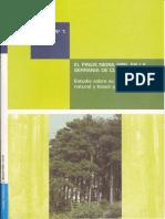 P.nigra en Cuenca -Reg. natural y bases para gestión-