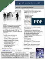 Folder -Gestao Empresarial Com ERP