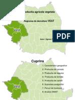 Regiunea de Dezvoltare Vest