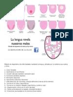 Método de diagnóstico de enfermedades mediante la lengua