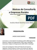CURSO ECO069 Consultoria a Empresas Rurales, ECO0069- RESUMEN