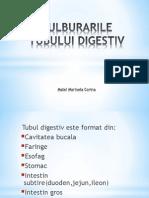 TULBURARILE TUBULUI DIGESTIV