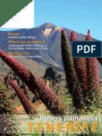 Revista Ciudades y Pueblos Tenerife
