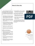 Instituciones Relacionadas Direcmin 2009 Cettem