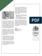 Instituciones Relacionadas Direcmin 2009 Ministerio de Mineria
