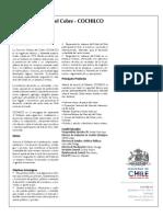 Instituciones Relacionadas Direcmin 2009 Cochilco