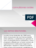 lasconvulsionesrurales1-111120201525-phpapp02