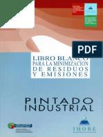 Pub 2001 013 f c 001 Pintado Industrial