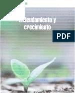 Articulo Dirfin Endeudamiento y Crecimiento