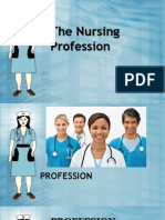 The Nursing Profession.ppt