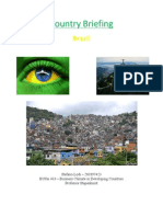 Country Briefing - Brazil