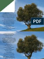 P. Dávila (El árbol por sus frutos se conoce)