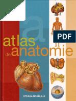 atlas de anatomie lustrat