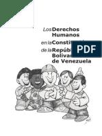 losderechoshumanosenlaconstitucin-120426221509-phpapp01