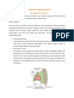 Tentir Anatomi KV