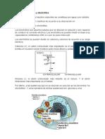 Resumen Agua y Electrolitos Sericos