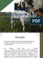 Requerimientos energéticos en pre rumiantes Migue.ppt