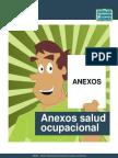 ANEXO DE SO