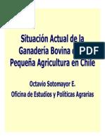Chile O Sotomayor