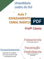 Aula 7 - 6.3.13 - Esvaziamento Do Canal Radicular