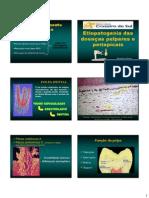 Aula de diagnostico Doenças da Polpa e Periapice_unicsul_2013_Brigida