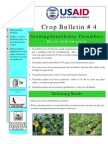 Crop_Bulletin_Cucumbers1.pdf