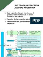 02 MATERIAL DE TRABAJO PRÁCTICO DEL CURSO DE AUDITORÍA (2)