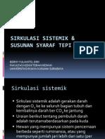 Sirkulasi Sistemik & Susunan Syaraf Tepi