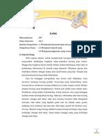Materi, soal dan pembahasan IPS Kelas 3