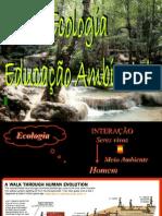 Apresentação sobre Educação ambientel