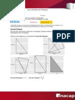 Areas y Perimetros de Triangulos