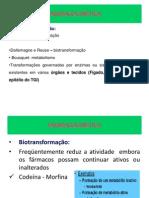 METABOLIZAÇÃO.pptx