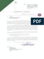 Circular N° 25 de VRA.pdf