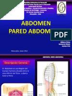 Diapos _ Abdomen Grupo #8
