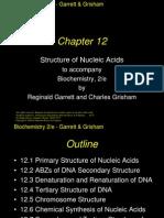 Chapter 12 Biochem