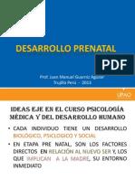 DESARRO PRE NATAL.pptx