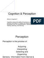 Cognition & Perception (1)