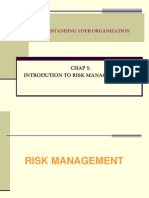 Chap 1- Intro to Risk Management