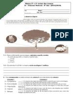 1ªFicha de avaliação_8º-  Factores do ambiente