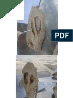 2 - Anatomia Veterinária - Ligamentos do Joelho.pdf