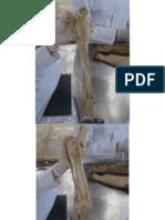 6 - Anatomia Veterinária - Ligamentos dos membros.pdf