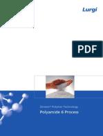 4019e Polyamide 6 Process